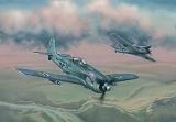 EDUARD 1/72 Focke-Wulf Fw190F8