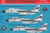 HAD 1/72 Grumman F14A VF41 Black Aces