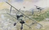 RODEN 1/48 Arado Ar68E