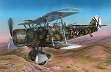 SPECIAL HOBBY 1/48 IMAM Ro37 Legion Condor