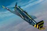 SWORD 1/72 Republic P47N